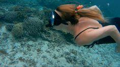 French Polynesia, South Pacific, Island Life, Screen Shot