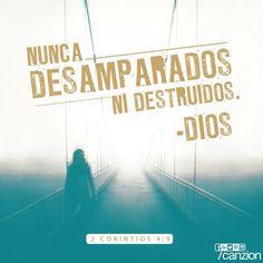 «Somos perseguidos pero nunca abandonados por Dios. Somos derribados, pero no destruidos». —2 Corintios 4:9