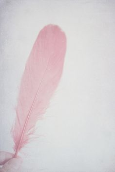 Light Feather