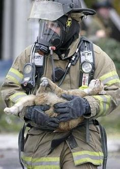 Real Men are Kind to Animals. A Boise firefighter rescues a cat from an apartment fire, then tenderly uses a SurgiVet mask to revive it.