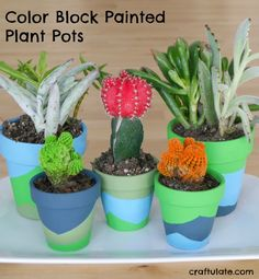 Kids can help decorate these painted plant pots using the tape resist technique to make the color blocks! Mason Jar Crafts, Mason Jar Diy, Easy Crafts To Sell, Crafts For Kids, Small Plants, Potted Plants, Cool Diy, Painted Plant Pots, Budget Crafts