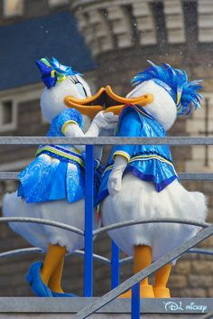 Disney Cartoons, Disney Movies, Disney Characters, Disney And Dreamworks, Disney Pixar, Disney Parks, Walt Disney, Donald And Daisy Duck, Mickey Mouse Clubhouse