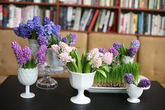 Create the Style: Hyacinthus Orientalis !!!
