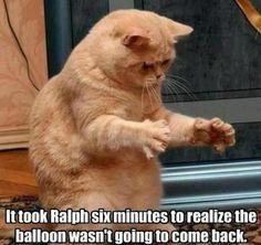poor ralph :(