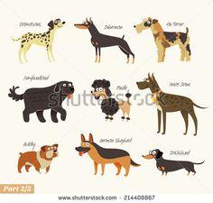 Dog breeds. Dalmatians, Bulldog, Newfoundland, Doberman, Great Dane, Fox Terrier, Poodle, Dachshund, German Shepherd. Funny cartoon character. Vector illustration. Isolated on white background. Set 2