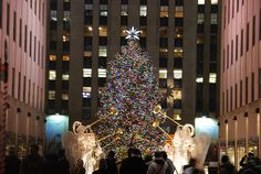 Christams Tree at Rockefeller Center, NYC