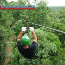 Adventure Tours in Puerto Iguazu Great #Adventure . This tour is the perfect combination of navigation and jungle. Great Adventure, Jungle Adventure, Photo Safari, Floating , Jungle Safari And Waterfalls. Check your #Travel #Tours #Packages#Vacations at #iguazufalls  and #PuertoIguazu  in#Argentina . Different #destinations are waiting for You! 01Argentina #TravelAgency  See more in link... #Jungle   #Adventure   #Photo   #Safari   #safaritour  #floating   #waterfalls
