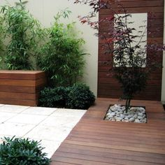 terrasse en bois composite avec bambous, arbustes et érable du Japon