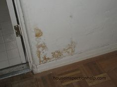 1000 images about termite damage on pinterest termite droppings baseboards and water damage for Water damage baseboard bathroom