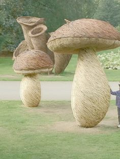 Willow sculpture - toadstools at kew gardens by Tom Hare