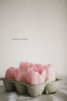 happy easter, easter tulips