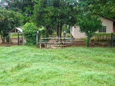 Saudosíssima ex fazenda em Gurupi - TO
