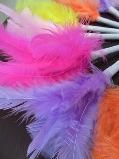 Who wouldn't like a feather pen!  great party favor or decoration!