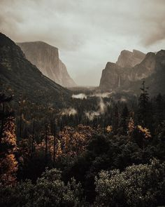 The naturalist John Muir is so closely associated with Yosemite National Parkafter all he helped draw up its proposed boundaries in 1889 wrote the magazine articles that led to its creation in 1890 and co-founded the Sierra Club in 1892 to protect it. @matandash