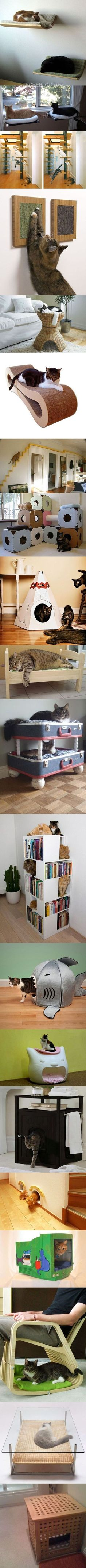 Here are twenty fun and geeky furniture designs for cats. I like the bookshelf.but with fewer cats. I Love Cats, Crazy Cats, Cool Cats, Photo Chat, Cat Room, Pet Furniture, Furniture Ideas, Diy Stuffed Animals, Cat Life