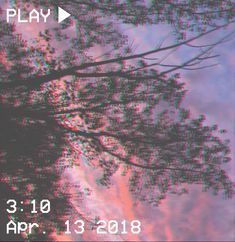 M O O N V E I N S 1 0 1            #vhs #aesthetic  #glitch #tree #sunset #purple #pink #clouds