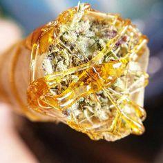 Stoned Humor how many states have legalized marijuana, marijuana cigarette, marijuana cancer, washington state marijuana laws, marijuana and anxiety, when did marijuana become illegal, best marijuana stocks, marijuana kid cudi. We show you how to be successful when you are planting pot!