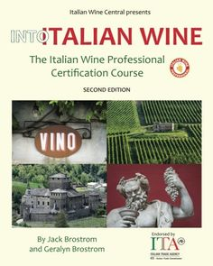 Into Italian Wine The Italian Wine Professional Certification Course *** You can find out more details at the link of the image.