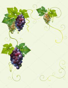 depositphotos_1085500-stock-illustration-vector-grape-frame.jpg (796×1024)
