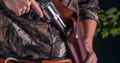 The Best Bear-Defense Handgun | Range365