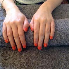 haute cout-orange artistic
