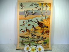Antique Poster Pennsylvania Game Birds Litho by by DivineOrders