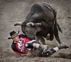 So You Want to Be A Cowboy? - Bull Riding - Mike Pillows - PhotoBotos