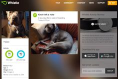 Whistle - a social network for pets