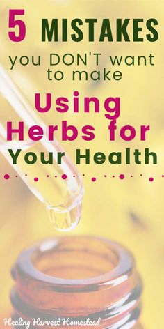 Why Herbs Aren't Working for You: 5 Common Mistakes You Might be Making Using Herbal Remedies — All Posts Healing Harvest Homestead