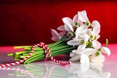 O #primavara frumoasa! 🌼 GrundigRomania #GrundigRomania #Romania #Love #ElectrocasniceGrundig #ElectrocasniceRomania #GrundigHome #Grundig Spring Time, Romania, December, Drawings, Birthday, 8 Martie, Instagram, Type 3, Facebook