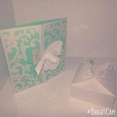 Card e scatola in carta perlata con chiusura a farfalla