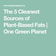 The 5 Cleanest Sources of Plant-Based Fats | One Green Planet