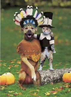 Turkey Day.
