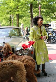 Artist and designer Fong Leng in Amsterdam Afghan Hound, Viktor Rolf, Roaring Twenties, Iconic Women, Amsterdam, Hot Dogs, Street Style, Shirt Dress, Gallery