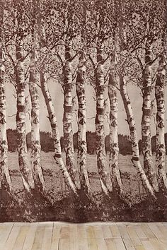 Birch Tree Tapestry