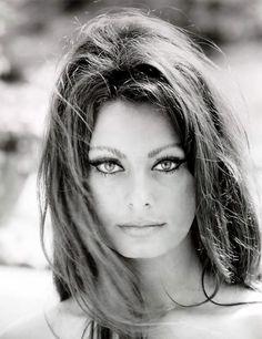 sophia loren ~ beautiful eyes and notice the eyebrows girls! Thai is not Sophia Loren ! Looks just like her, she is a model ! Divas, Timeless Beauty, Classic Beauty, True Beauty, Iconic Beauty, Beauty Tips, Real Beauty, Beauty Style, Beauty Secrets