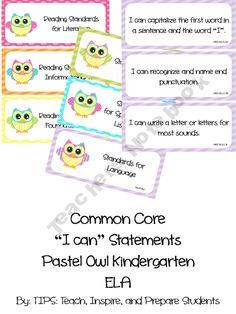 Kindergarten I can statements in an adorable owl theme. Classroom Helpers, Future Classroom, Classroom Organization, Classroom Ideas, Kindergarten Special Education, Kindergarten Literacy, Teacher Notebook, Teacher Hacks, Core I