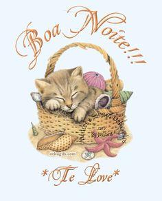 Boa Noite!!! Te Love