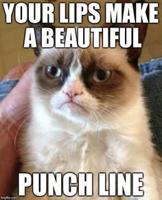 Your #lips look like a beautiful #punchline #LetsGetWordy #GrumpyCat