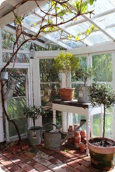 Växthus ~ Greenhouse   Lilla Blanka   Bloglovin