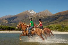 New Zealand Horse back riding trails...repinned with thanks by DressageWaikato.co.nz....