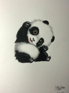 How To Draw A Panda How To Draw Pinterest Panda Drawing