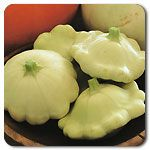 Organic Benning's Green Tint Pattypan- grow these every year!