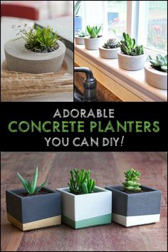 Need durable and inexpensive planters? Make your own concrete bowls and planters!