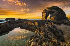 Horse Head Rock at Wallaga Lake in Bermagui is one of the premier photography locations in NSW and a place that everyone should visit! One Dollar, Horse Head, Photography Website, Places To Go, Coast, Photos, Pictures, Australia, Hot Spots