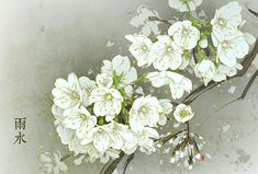 whisper of the forest Apricot Blossom, Chinese Calendar, Art Story, Ink Illustrations, Pretty Art, Chinese Art, Watercolor Flowers, Flower Art, Amazing Art