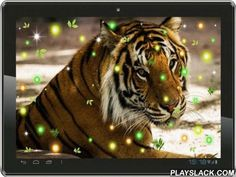 Tigers Voice Live Wallpaper  Android App - playslack.com , Tigers Voice live wallpaper free interactive enhanced edition version.Application was enriched according to users' recommendations. Tigers Voice live wallpaper interactive principles added.Pleasant and nonintrusive Gallery live wallpaper with an animation theme with the following components: beautiful and dangerous, jungle.An animated Tigers Voice live wallpaper application a simple and elegant solution. The perfect design…