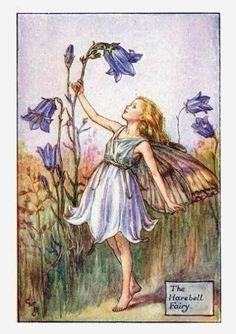 Cicely Mary Barker ~ The Harebell Fairy