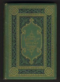 Appleton's Juvenile Annual (1871)