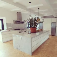 Kitchens, Modern, Design, Home Decor, Trendy Tree, Decoration Home, Room Decor, Kitchen, Cuisine